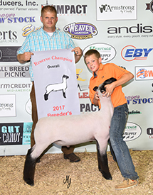 Johnson Show Lambs | Winners